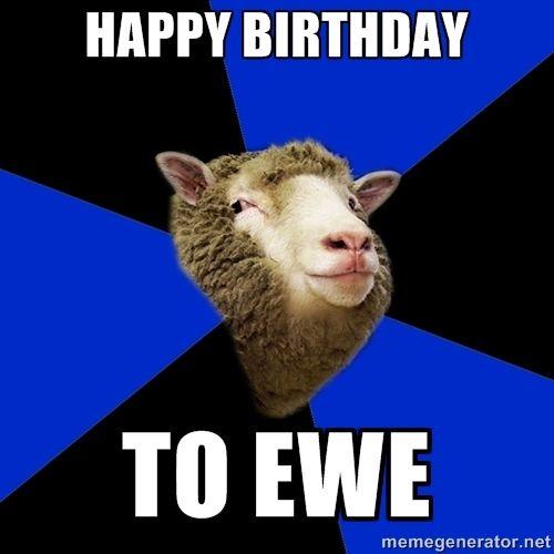 Birthday Cat Meme Generator: 17 Best Ideas About Birthday Meme Generator On Pinterest