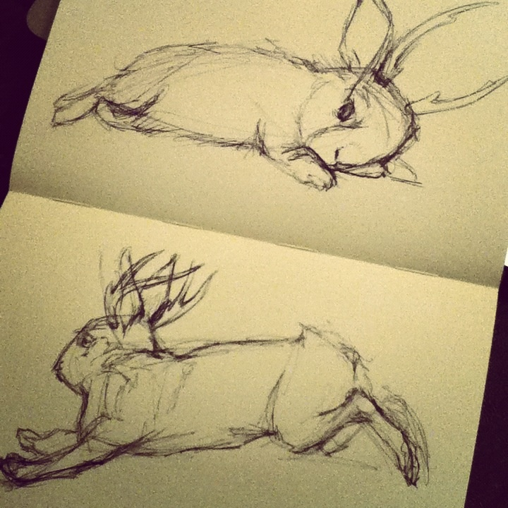 Jackalopes! Ballpoint pen in my sketchbook.