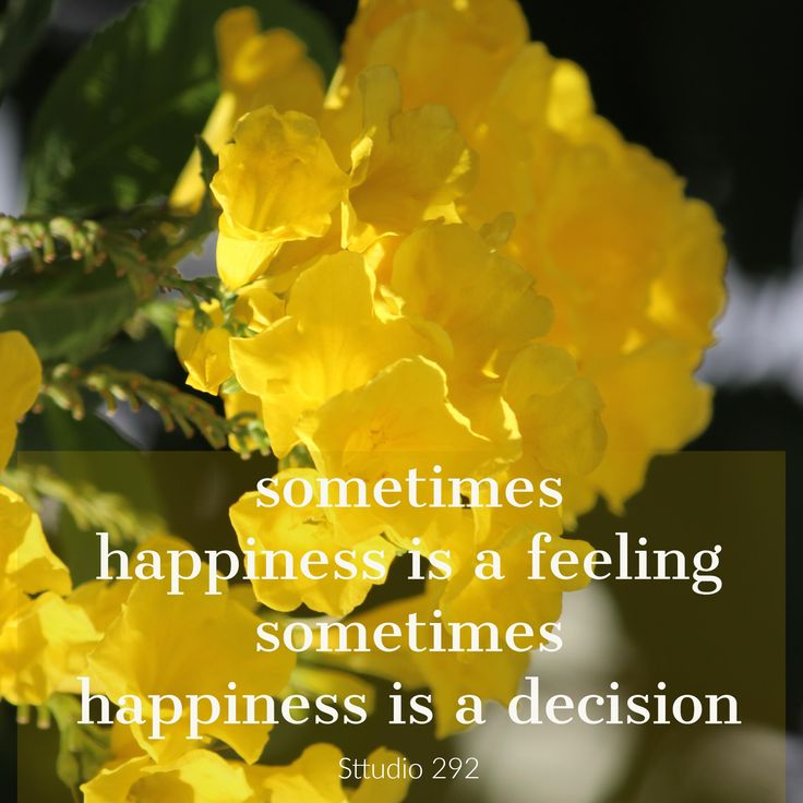 17 best quotes on happiness with flower pictures images on pinterest beautiful yellow tecoma flowers mightylinksfo Image collections