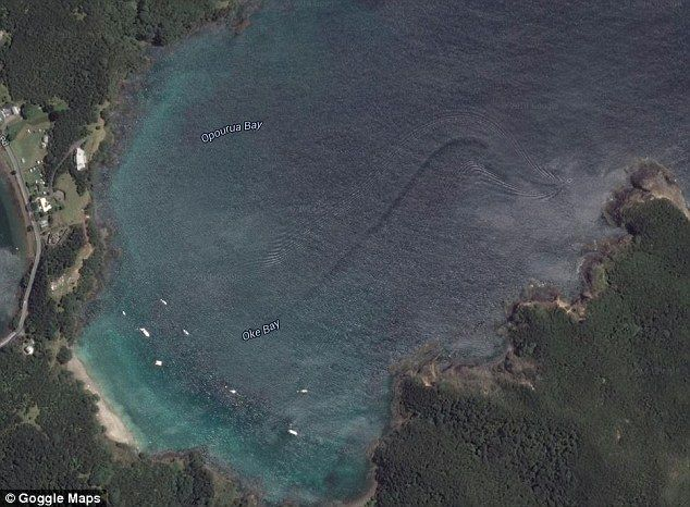 A long swirled wake was spotted on Google Earth in Oke Bay, part of the Bay of Islands in ...
