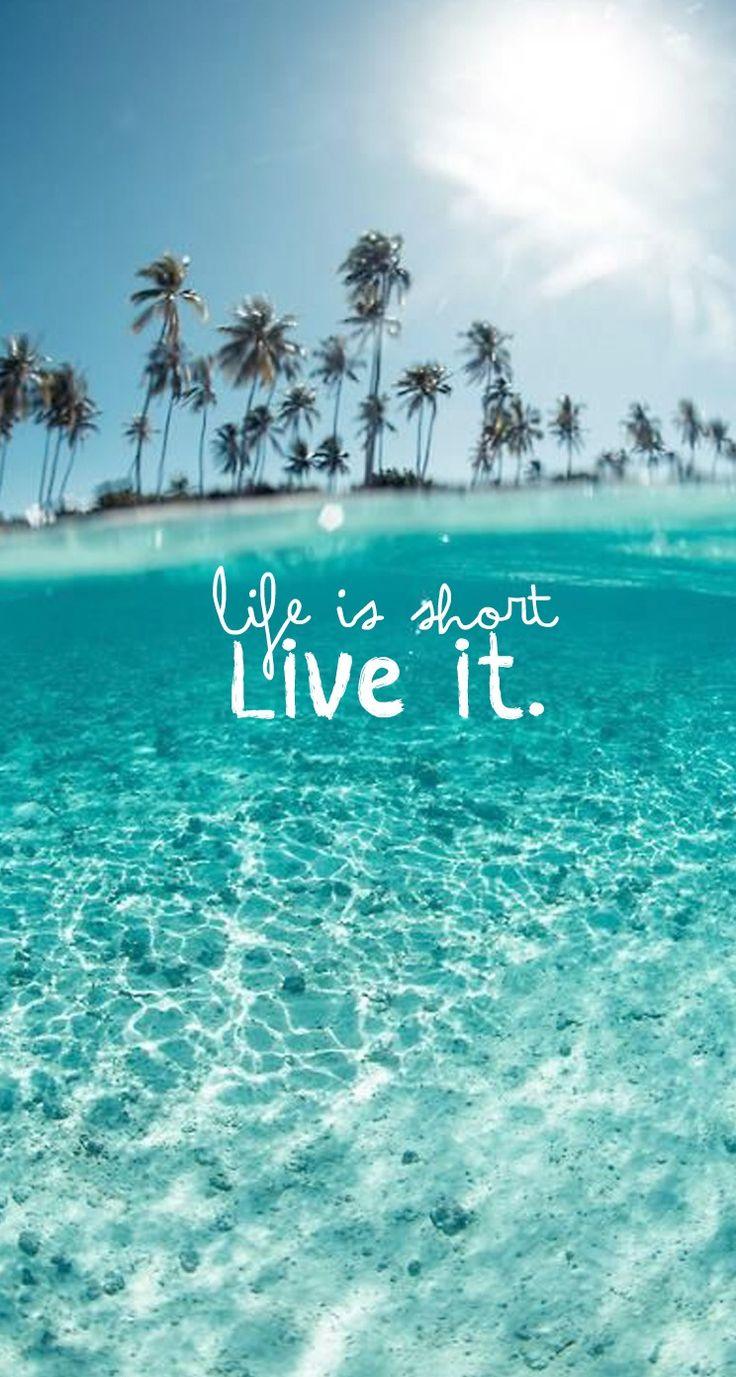 La vida es corta ¡vívela! #Frases #Verano #Summer Life is short - Live it! Palm Trees Tropical