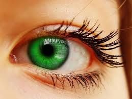 pictures of beautiful eyes - Google Search