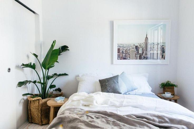 9 растений-находок, которые стоит завести в спальне — Полезные советы