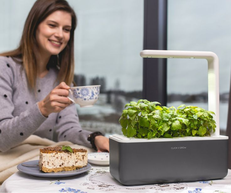 Smart Garden takes care of plants automatically by making sure they have enough water, light, nutrients. https://goo.gl/ZGiBnm