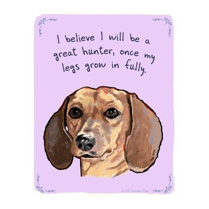 These are all super hilarious. @Lisa Buckley: Long Legs, Weenie Dogs, Secret Thoughts, Cute Pet, 8X10 Prints, Weiner Dogs, Wiener Dogs, Shorts Legs, Little Dogs