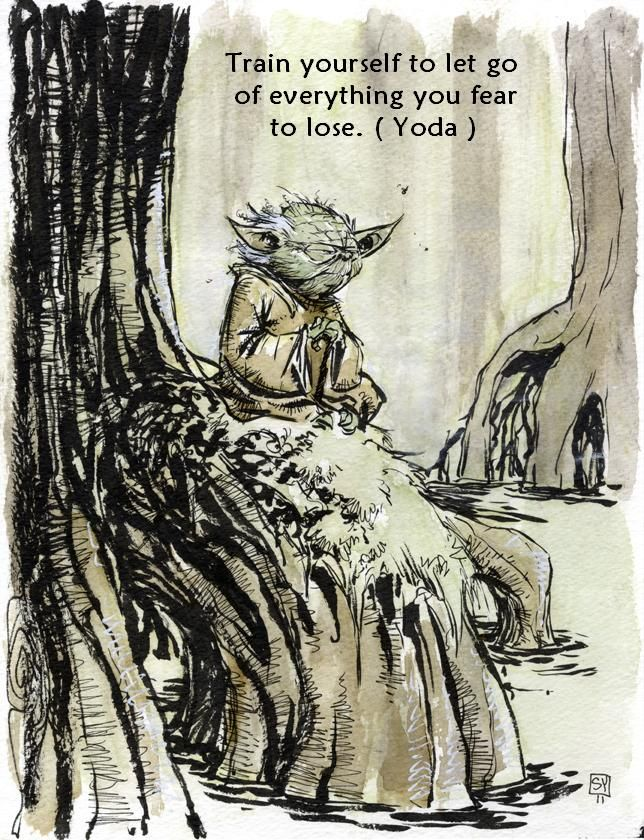 Train yourself to let go of everything you fear to lose - Master Yoda