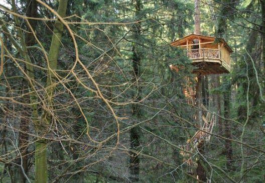 M s de 25 ideas incre bles sobre caba as en los arboles en - Casa arbol zeanuri ...