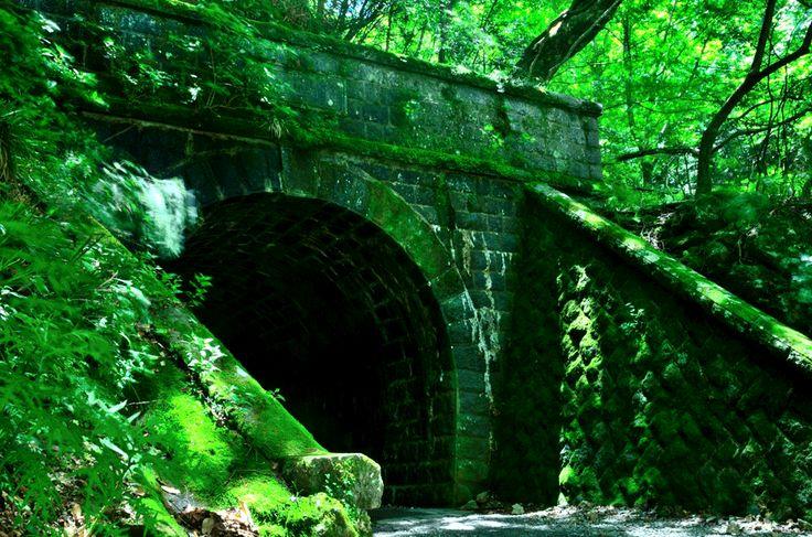 <伊豆おすすめスポット>川端康成の『伊豆の踊子』の舞台として、石川さゆりが唄う『天城越え』の旧天城トンネル