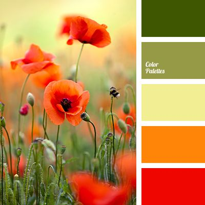 scarlet - Tag | Page 2 of 6 | Color Palette Ideas
