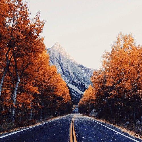 Fall #chasingthelight