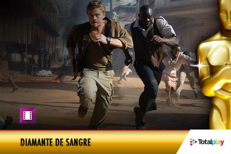 Leonardo DiCaprio fue nominado a Mejor Actor por su interpretación en 'Diamante de Sangre'. Vuelve a ver esta película en VOD de Totalplay.