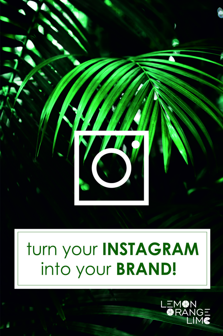 Turn your Instagram account into a brand! How to become famous on Instagram, Instagram theme, Instagram ideas, Instagram tips and more on lemonorangelime.com