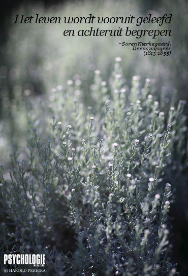 E-cards: Inspiratie - Psychologie Magazine