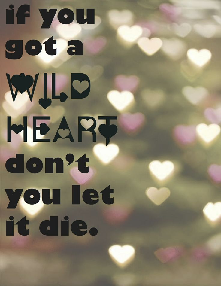 wild heart daughtry free mp3