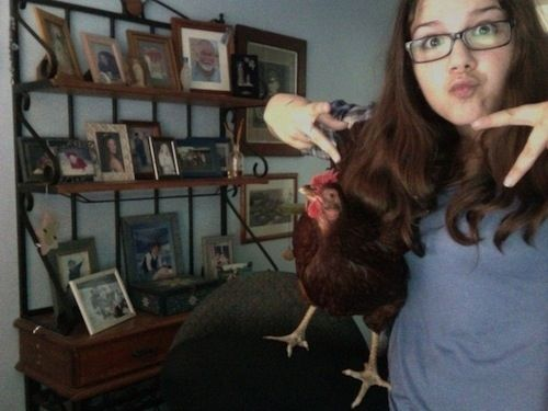 This girl taking selfies with her chicken. | The 49 Most WTF Pictures Of People Posing WithAnimals