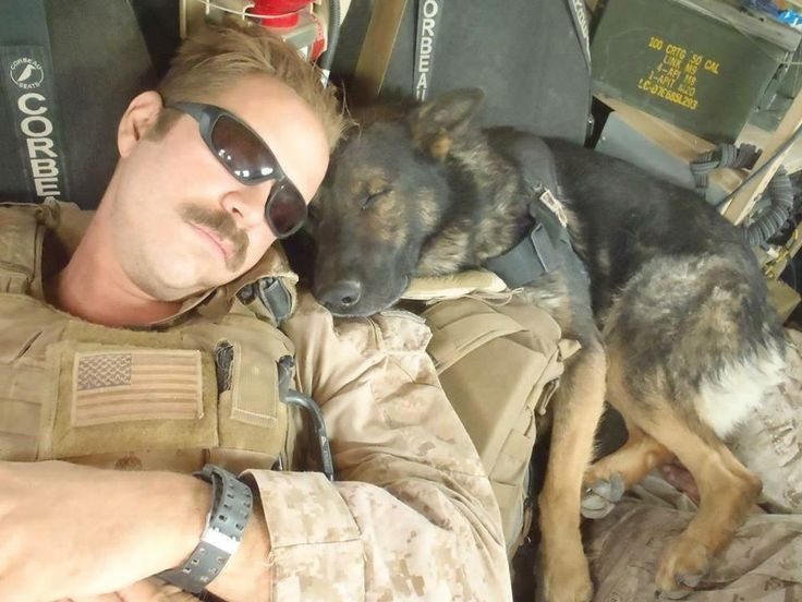 Naptime for a US Marine and his K-9 partner in Afghanistan
