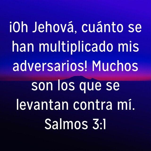 Biblia Salmos 1 10 Por Blanca Salmos Frases De La Vida Salmo 1