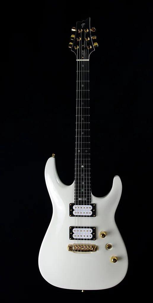 V25-FX Custom Guitar by Taisto Guitars