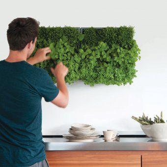 #design3000 Bereits mit Erde gefülltes Pflanz-Element für die vertikale oder horizontale Bepflanzung. #urbangardening