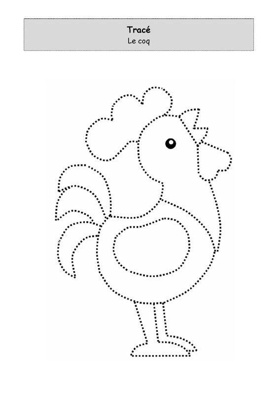Le coq à tracer