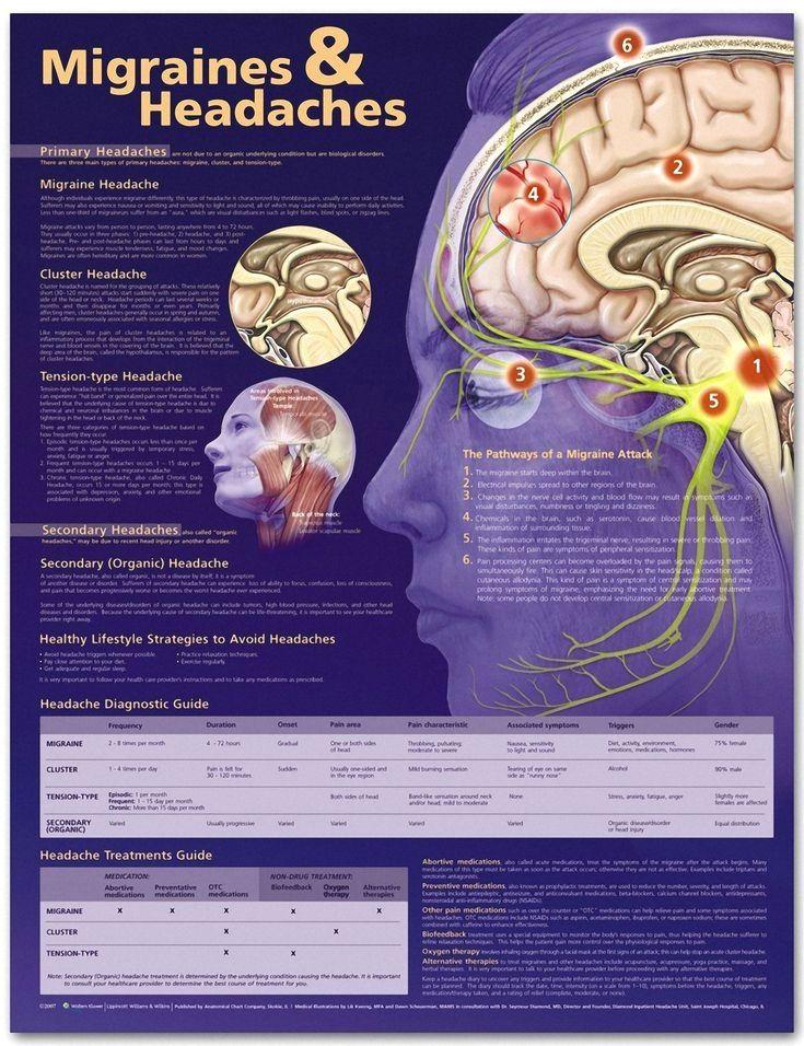 Migraines And Headaches Chart Migraease Com Migraine Headache