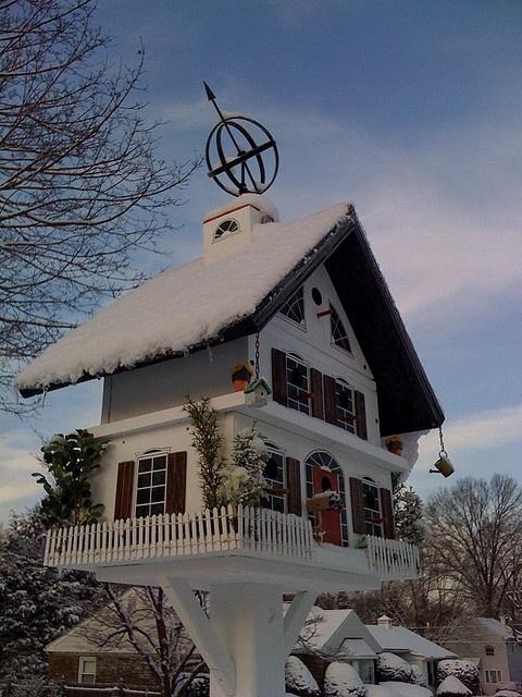birdhouse...!