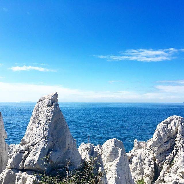 【mkorboc】さんのInstagramをピンしています。 《#白崎海岸 #白崎海洋公園 #白い岩 #青い海 #青い空 #石灰岩 #海 #空 #青 #白 #快晴 #晴天 #ドライブ #和歌山県 #由良町 #20160927》