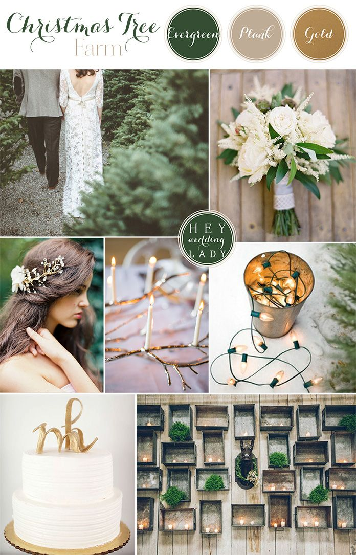 Christmas Tree Farm Wedding Ideas In Green, White, And Gold