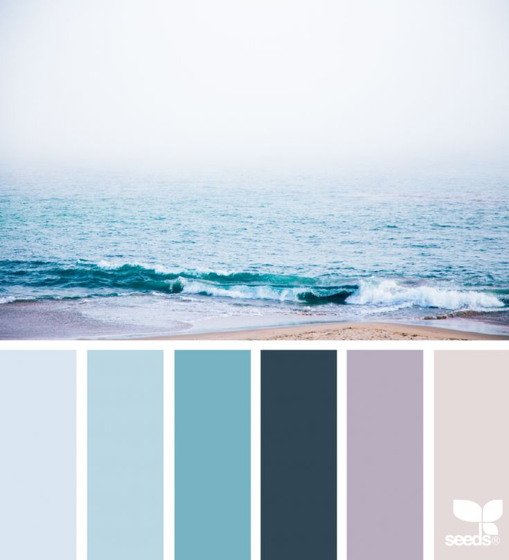 Color Shore | Design Seeds