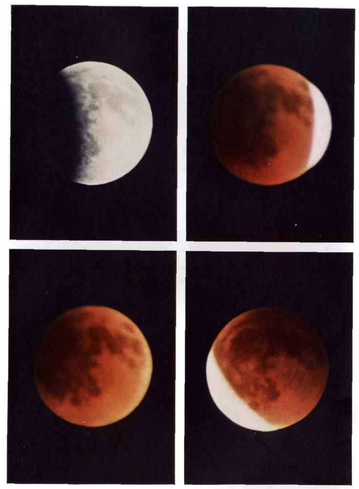 The 25 best lunar eclipse diagram ideas on pinterest eclipse diagrams from the scientific american archive document a feat of citizen science ccuart Image collections
