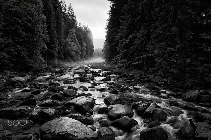 Vydra river after rain - null
