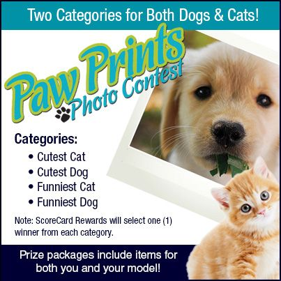 "Mark your calendars and get out those cameras! The ScoreCard Rewards Paw Prints Photo contest starts September 13th! There will be two categories for both dogs and cats: ""Cutest"" and ""Costumes"". The ScoreCard Rewards team will judge this contest and pick winners on Monday, September 30th. See the official rules on our notes page for more details and prize list. We can't wait to see your photos!"