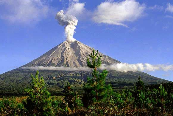 Semeru, or Mount Semeru is a volcano located in East Java, Indonesia. It is the highest mountain on the island of Java. The stratovolcano is also known as Mahameru, meaning 'The Great Mountain. The name derived from Hindu-Buddhist mythical mountain of Meru or Sumeru, the abode of gods.