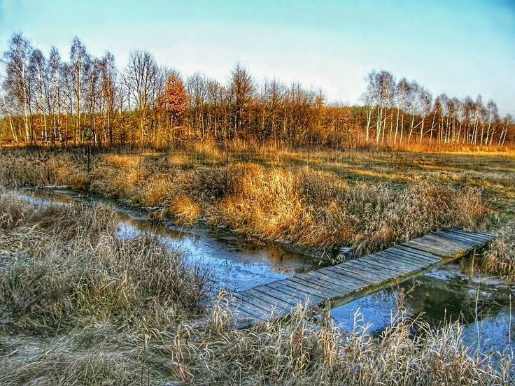 A #bridge too far. #neirawypełzaznory  #HDR #autumn #fall #landscape