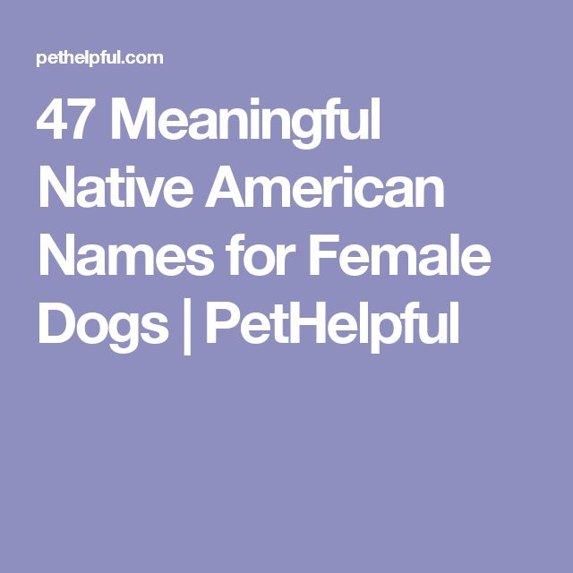 47 Meaningful Native American Names for Female Dogs | PetHelpful