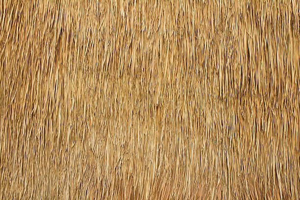 Image Result For Thatch Roof Texture Asphalt Texture
