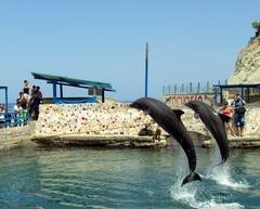 Rodadero Aquarium MAGDALENA Pinterest