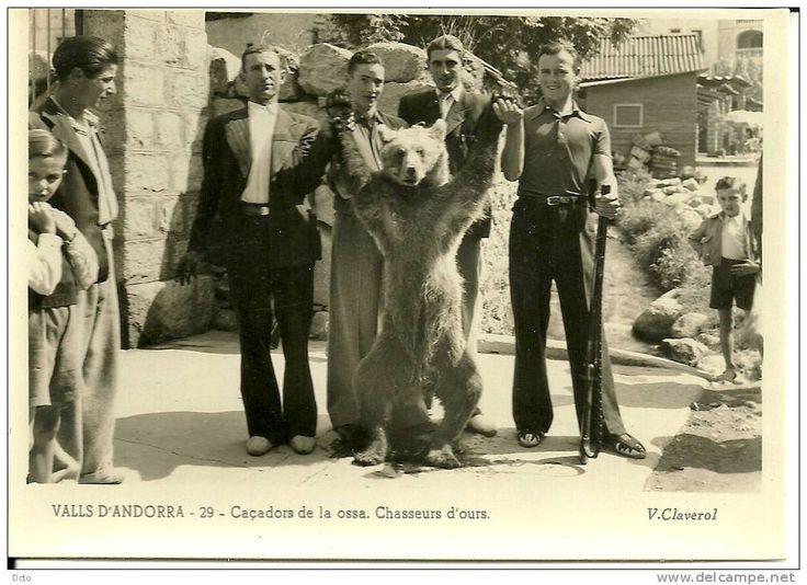 Andorra - Delcampe.net demonstrator niedźwiedzi stara pocztówka
