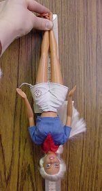 Bungee Barbie, gravity and measuring.