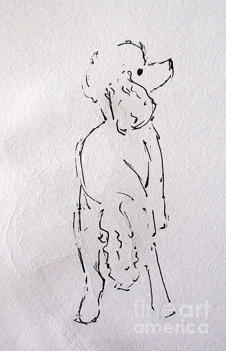 Lu Lu by Joanne Claxton - Lu Lu Drawing - Lu Lu Fine Art Prints and Posters for Sale