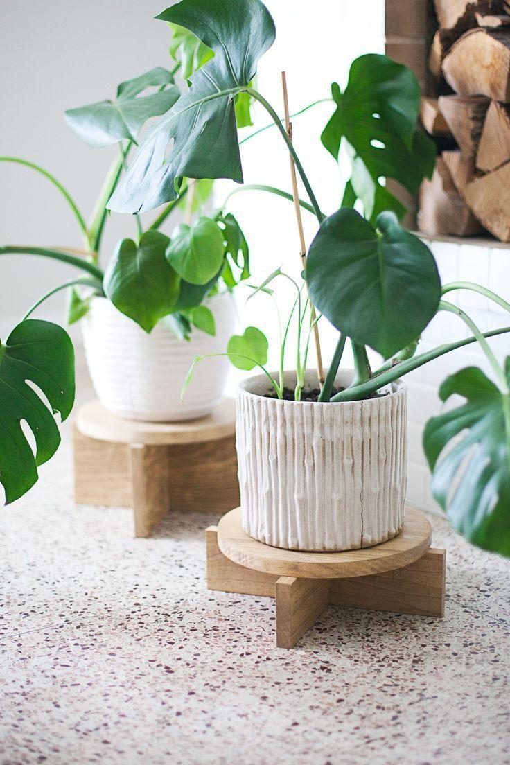 DIY Modern Wood Plant Stands