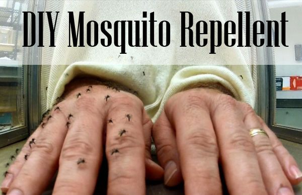 Follow Even if you aren't sure if this homemade mosquito repellent works, wouldn't it be worth it to try. At least you won't be covering your body and your child's ... Read More