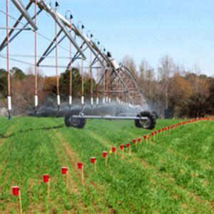La cantidad de agua que debería de aplicarse mediante un sistema eficiente debe ajustarse a las necesidades del cultivo, considerando las características del suelo y la climatología de la zona, así como la capacidad de retención de agua en las raíces, el uso hídrico diario, o la eficiencia de bombeo.