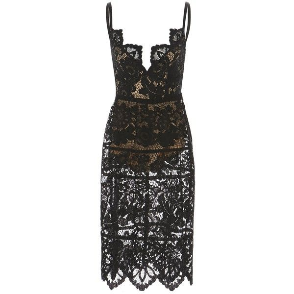 Gianna Dress Black (490 NZD) ❤ liked on Polyvore featuring dresses, lace midi dress, scalloped dress, plunge-neck dresses, fitted tops and fitted lace top