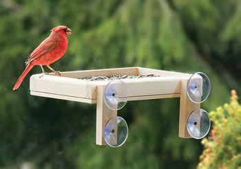 Window Bird Feeder - this looks easy enough to make.