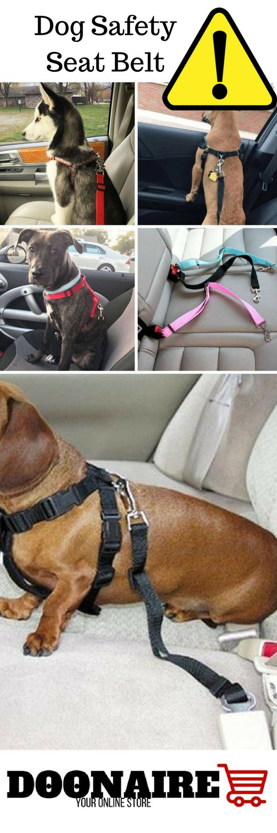 Adjustable Dog Safety Seat Belt Harness.   Dog Pet Safety Seatbelt Car Vehicle Seat Belt Adjustable Harness.  Feature:  Reliable and convenience.  Multi-colors for you to choose.  Adjustable straps to fit most pet dog, cat.  Fully adjustable and attachable to all vehicles' seat belt receptacles. Keep your pet safely restrained and secure in vehicle while driving.