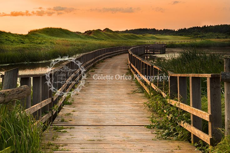 Bridge Overlooking Sand Dunes Photography Backdrop. Early morning sunrise along the Duneland Trail, Cavendish, PEI. To order backdrop visit www.backdropscanada.ca