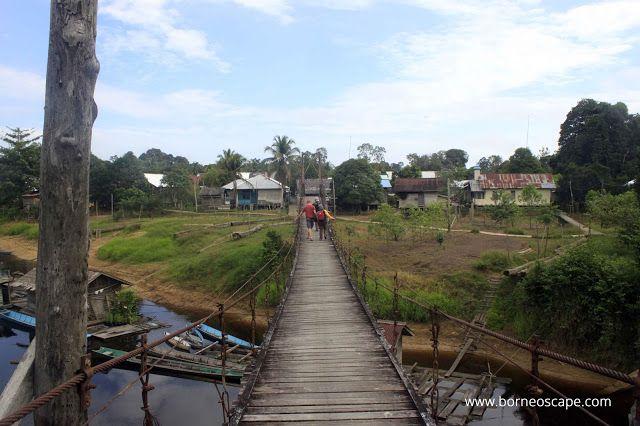Long House of Dipanimpan Bolong, Nanga Nyabau ~ Cemaru