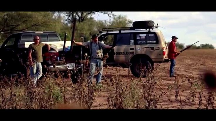 DOVE HUNTING TEXAS STYLE OPENING WEEKEND