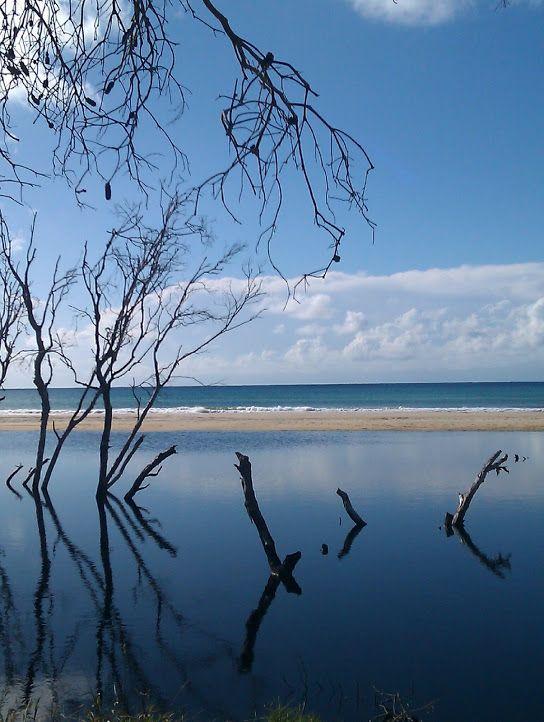 Flinders Beach, North Stradbroke Island, Queensland, Australia.  (Debbie Harvey)